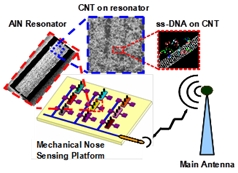 Nanoscale energy efficient switching devices 2