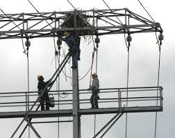 power-system-failures-birds