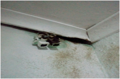 electrical installation 12 most common errors
