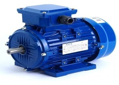 Figure N°1: Electric Motor